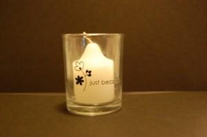 Candlebackterriw